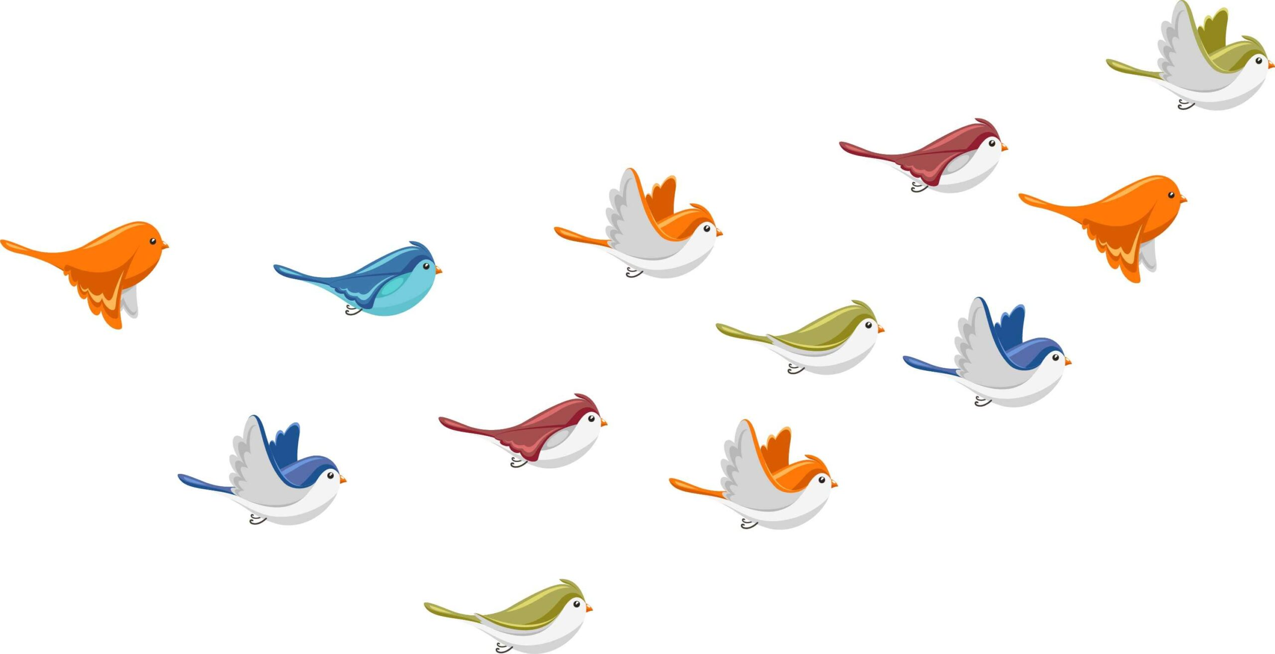 Colors Birds